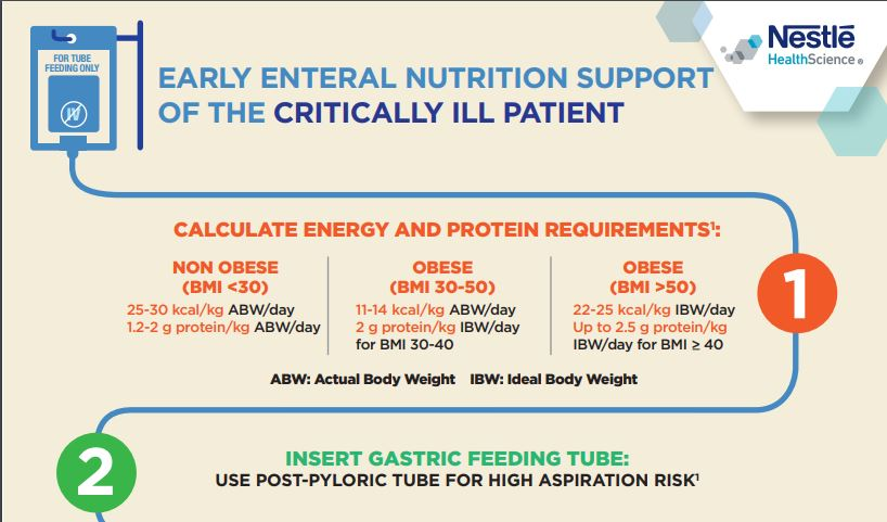 Early Enteral Nutrition Support of the Critically Ill Patient